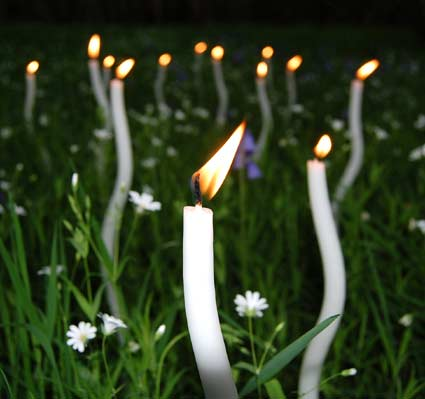 candles in woodland